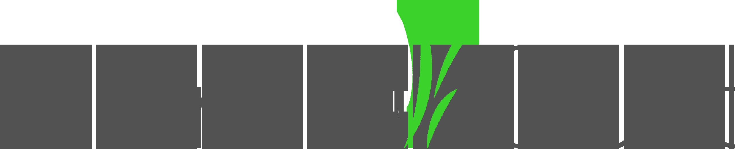 PlantaCult | natürliche Pflanzenpflege mit System